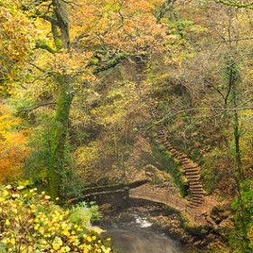 Winding Staircase, Aira Beck amidst a wonderfull display of autumn colour.