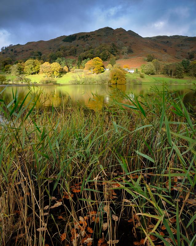 Loughrigg Tarn, Autumn