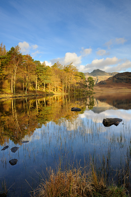Reflections, Blea Tarn