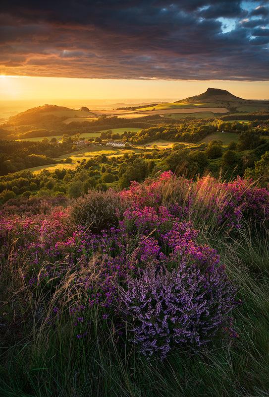 Late Summer Sun, Roseberry Topping